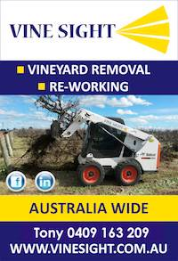 Olive Grove and Vineyard Removal and Re-Working