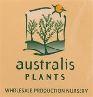 Australis Plants