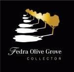 Fedra Olive Grove