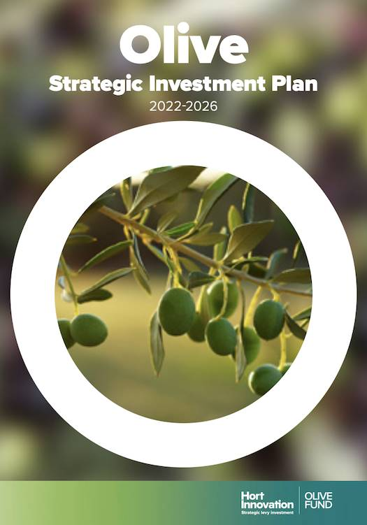 Olive Strategic Investment Plan 2017-21