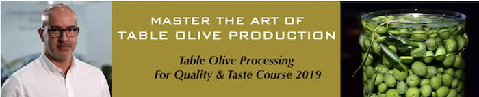 Master the Art of Table Olive Production