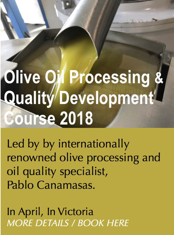 Olive Processing Quality Course