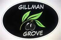 Gillman Grove Trudi Heaperman