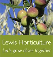Lewis Horticulture - Let's Grow Olives Together Malcolm Lewis