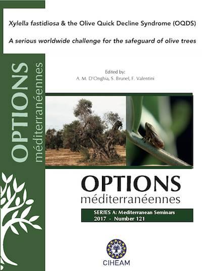 Xylella fastidiosa & The Olive Quick Decline Syndrome