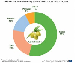 Overview of Olive Oil Production in the European Union