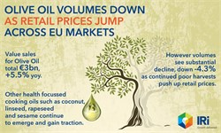 EU Olive Oil Sales Volumes Decline Despite Rise in Value