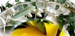 New Report Concludes Olive Oil Needs a Quality Standard to Guarantee Authenticity