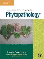 Phytopathology : Addressing the New Global Threat of Xylella fastidiosa