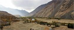 Punjab Distributes Nearly Half a Million Olive Saplings to Local Farmers