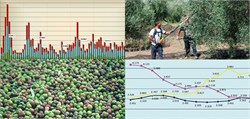 Artificial Intelligence to Predict the Price of Olive Oil