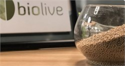 Environmentally Friendly Bioplastics Created From Olive Seeds