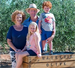 Olive Growers Face Challenging Season with Limited Water Supply, Heat