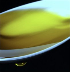 World's Healthiest Olive Oil? The Jury's Still Out